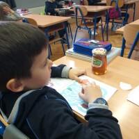 Školski medni dan