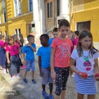 Kauflandova partnerska škola